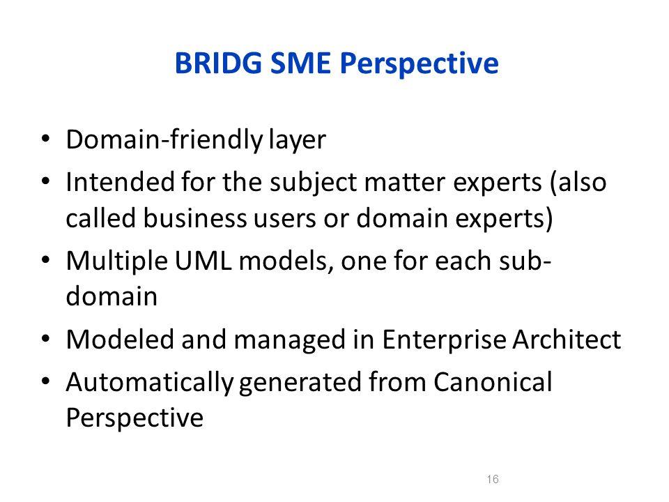 BRIDG SME Perspective Domain-friendly layer