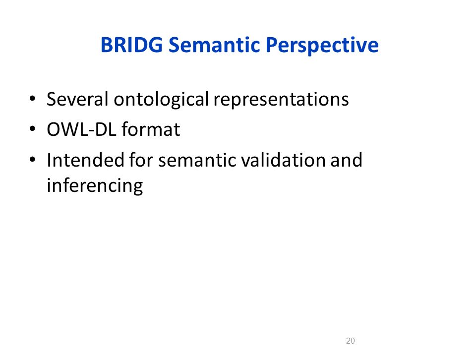 BRIDG Semantic Perspective
