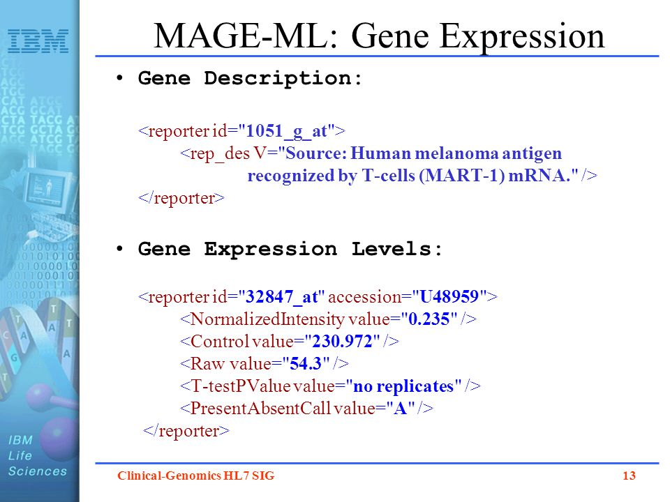 MAGE-ML: Gene Expression