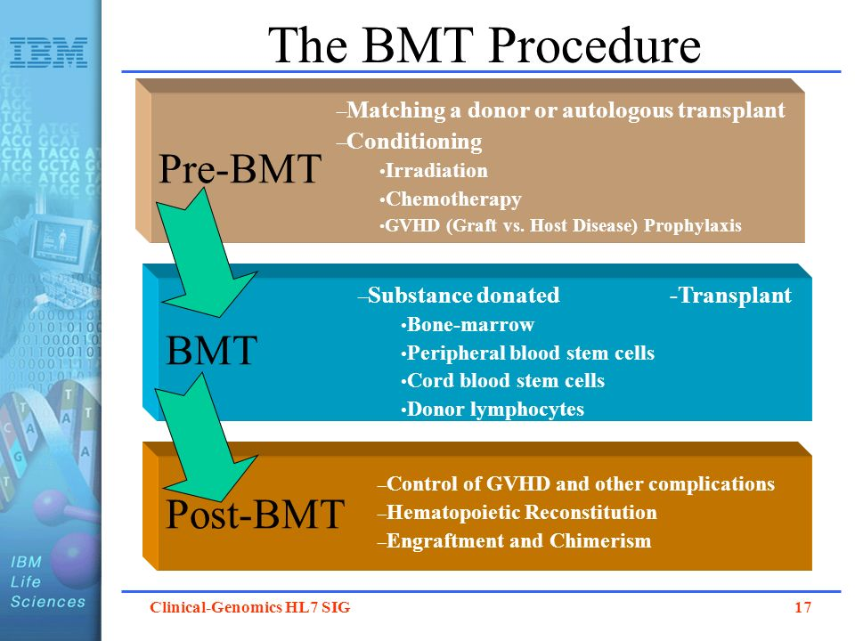 The BMT Procedure Pre-BMT BMT Post-BMT