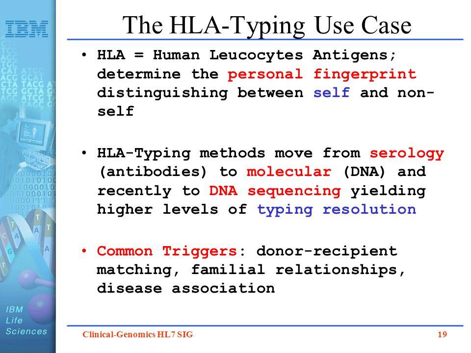 The HLA-Typing Use Case