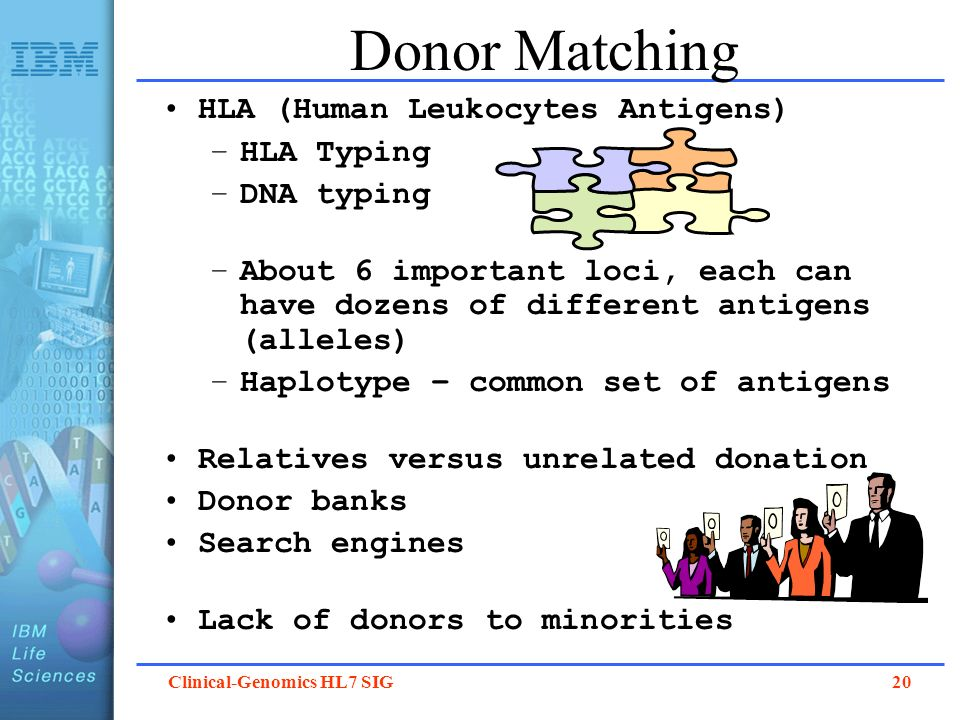 Donor Matching HLA (Human Leukocytes Antigens) HLA Typing DNA typing
