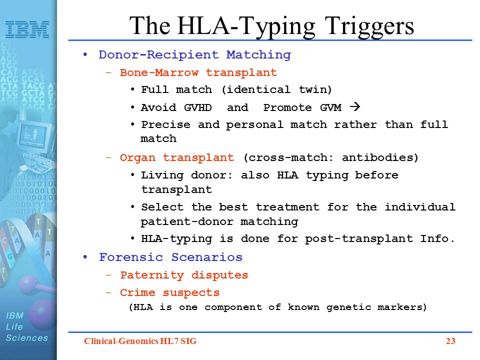 The HLA-Typing Triggers