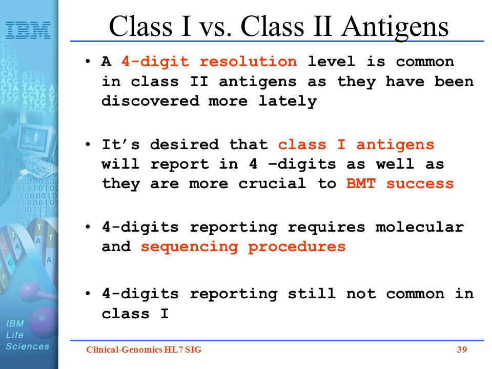 Class I vs. Class II Antigens