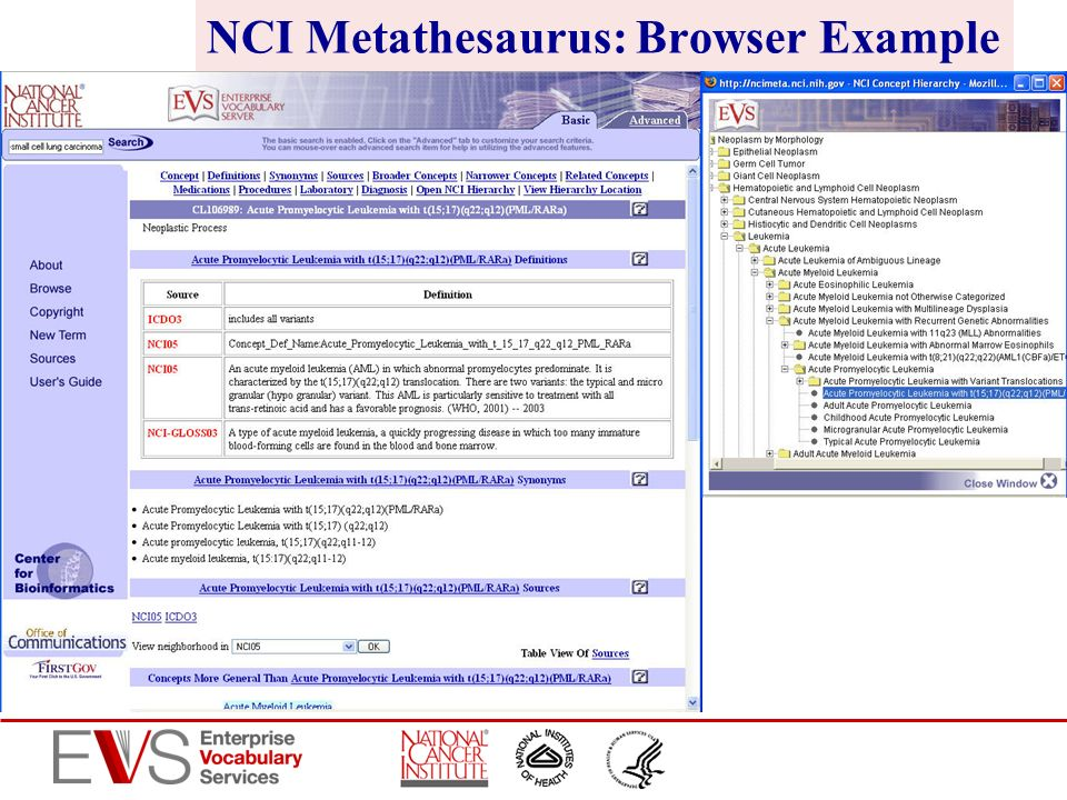 NCI Metathesaurus: Browser Example