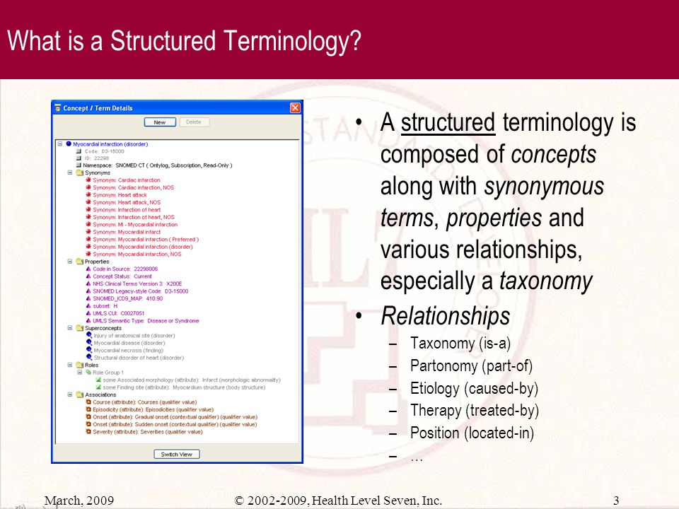 What is a Structured Terminology