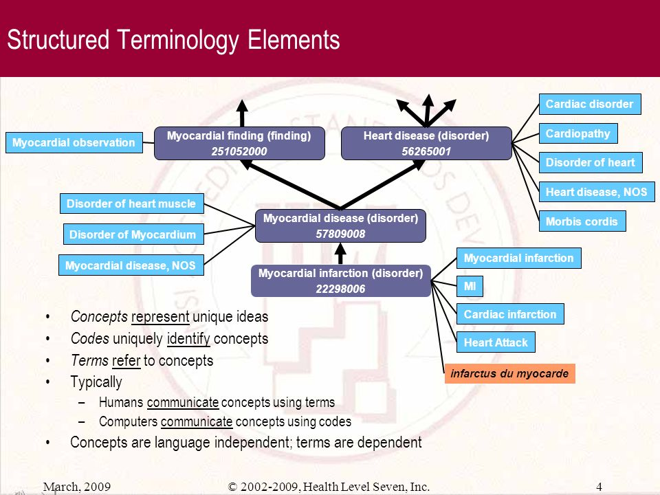 Structured Terminology Elements