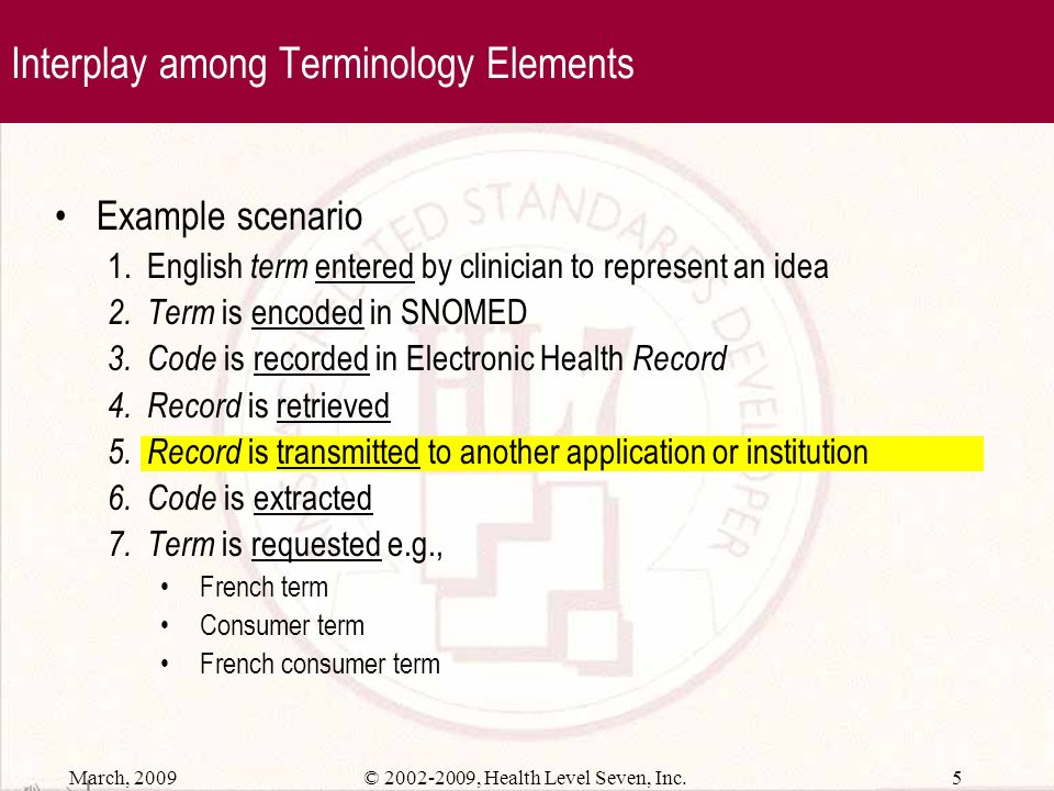 Interplay among Terminology Elements