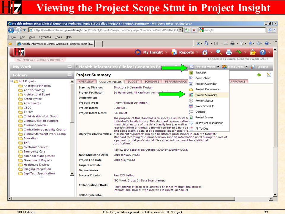 Viewing the Project Scope Stmt in Project Insight