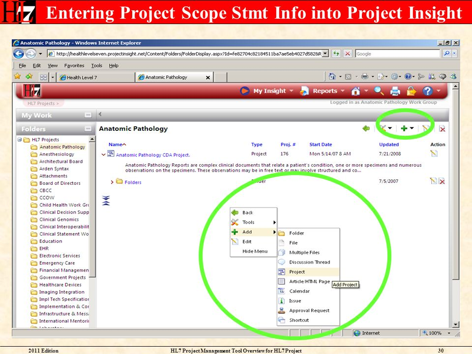 Entering Project Scope Stmt Info into Project Insight