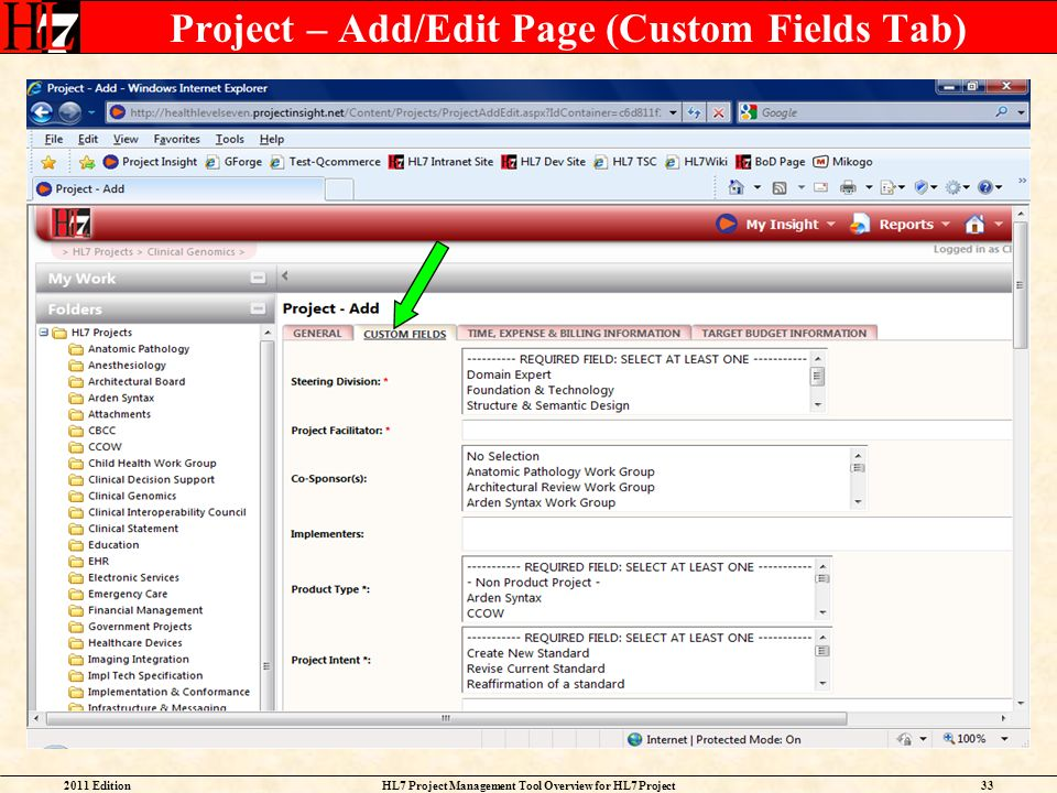 Project – Add/Edit Page (Custom Fields Tab)