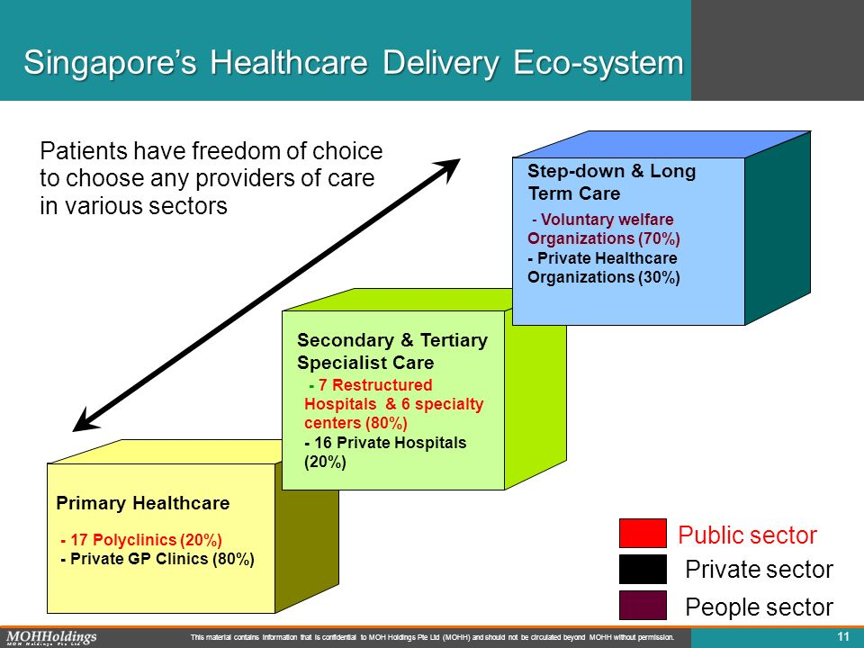 Singapore's Healthcare Delivery Eco-system