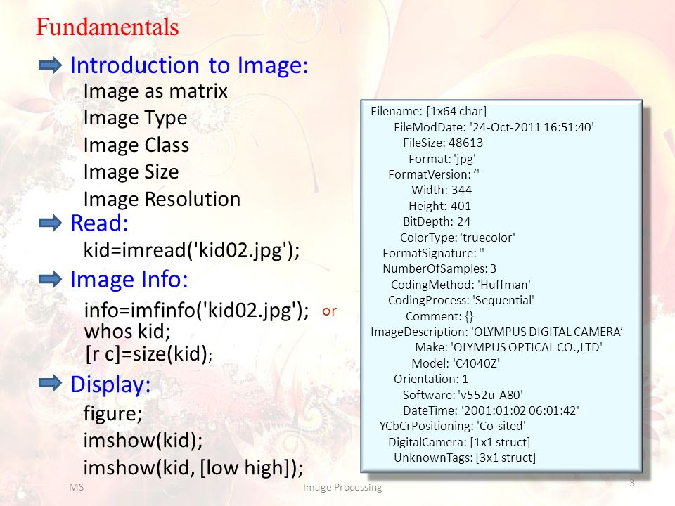 Introduction to Image:
