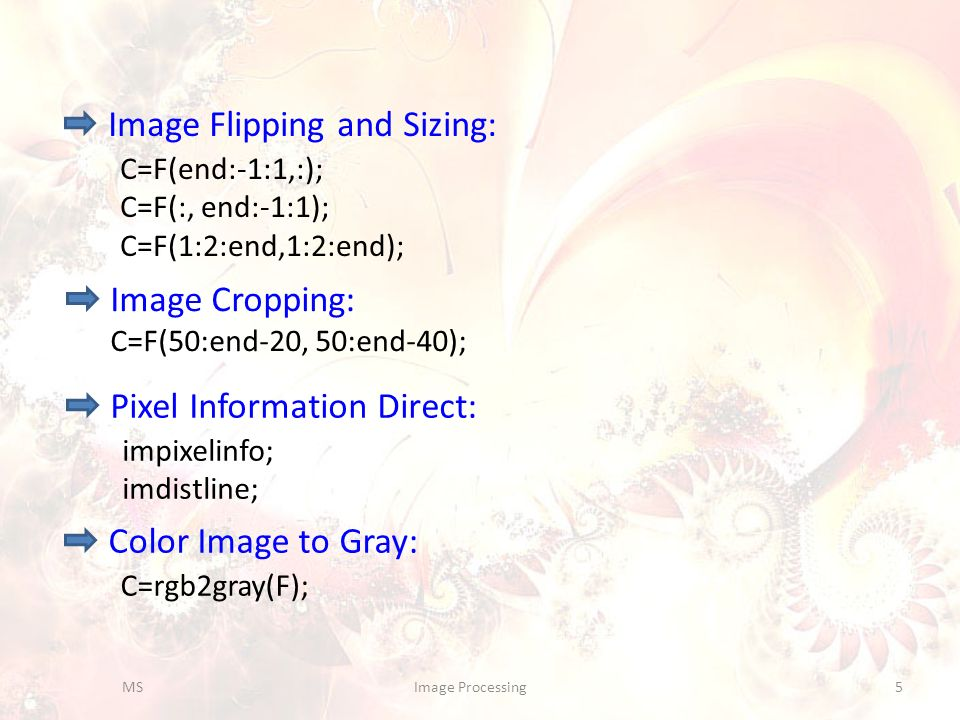 Image Flipping and Sizing: