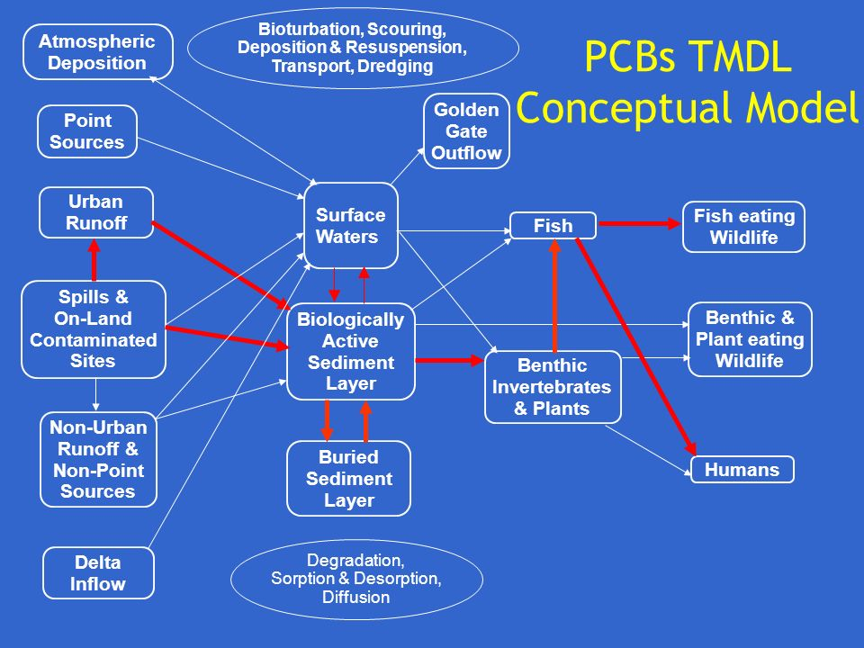 PCBs TMDL Conceptual Model
