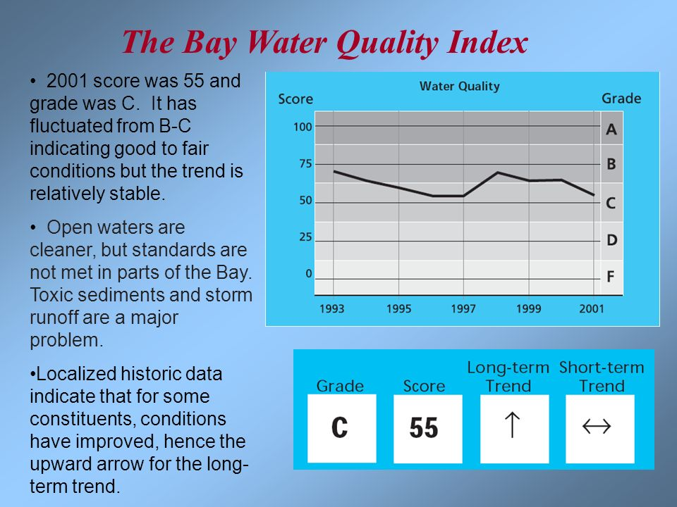 The Bay Water Quality Index
