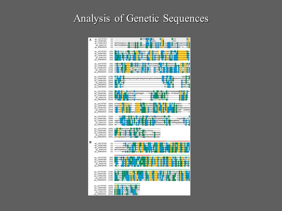 Analysis of Genetic Sequences