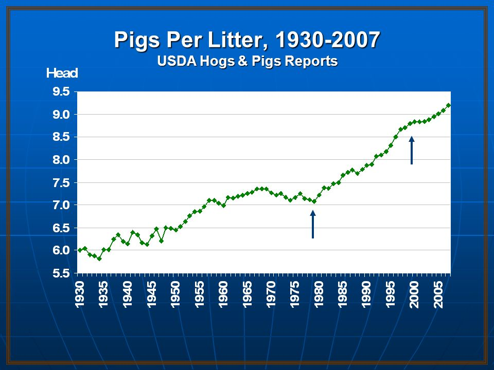 Pigs Per Litter, 1930-2007 USDA Hogs & Pigs Reports