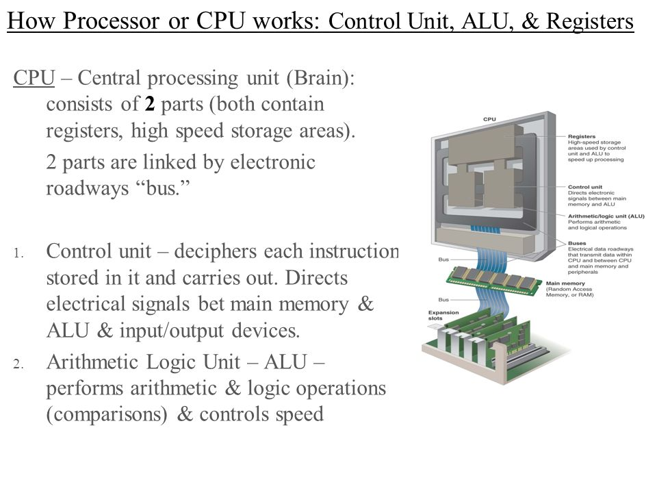 How Processor or CPU works: Control Unit, ALU, & Registers
