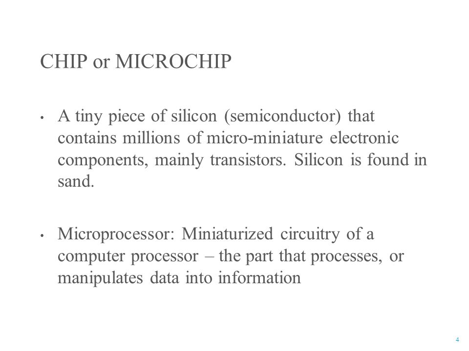 CHIP or MICROCHIP