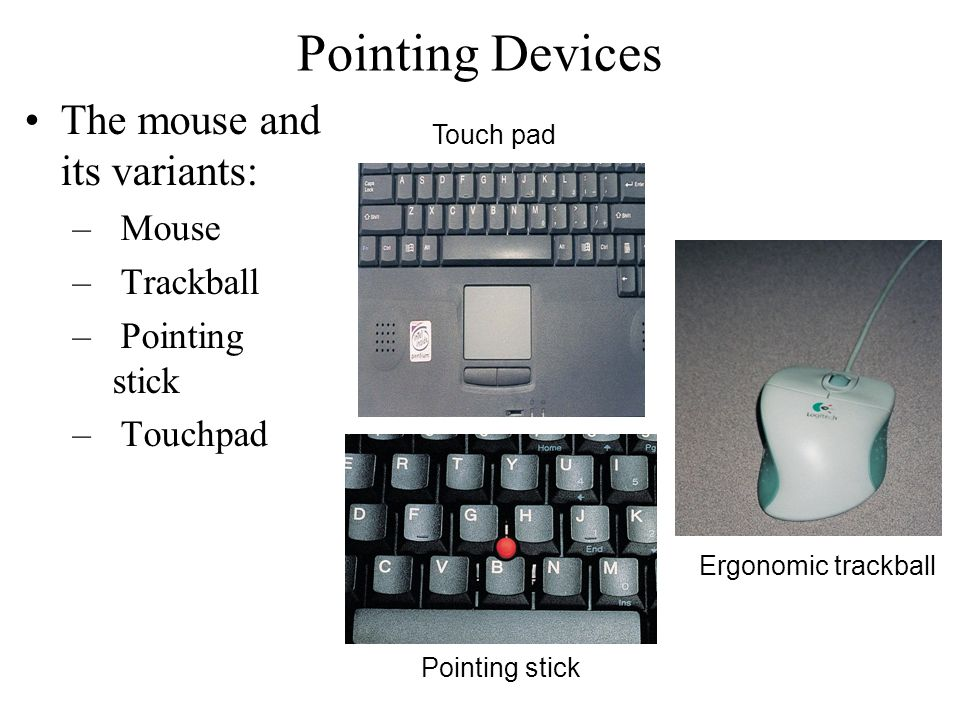 Pointing Devices The mouse and its variants: Mouse Trackball