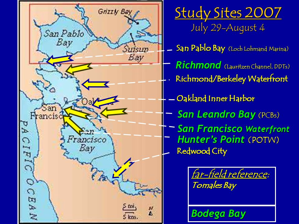 Study Sites 2007 July 29-August 4
