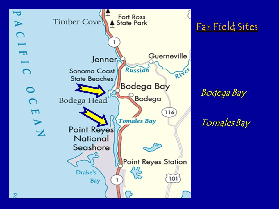 Far Field Sites Bodega Bay Tomales Bay