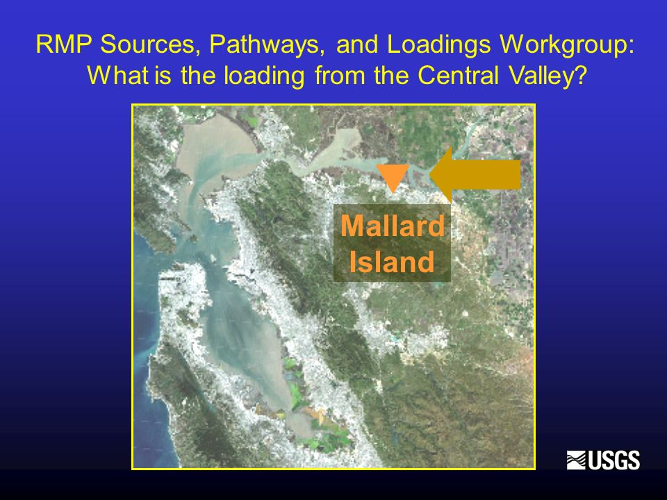 Mallard Island RMP Sources, Pathways, and Loadings Workgroup: