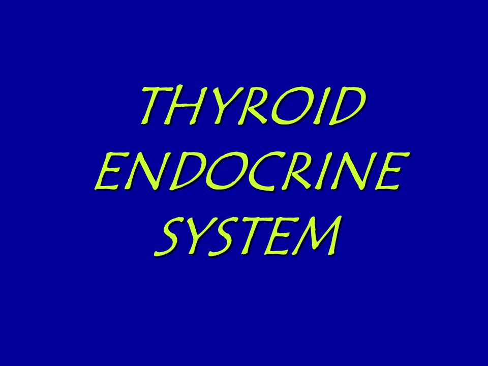 THYROID ENDOCRINE SYSTEM