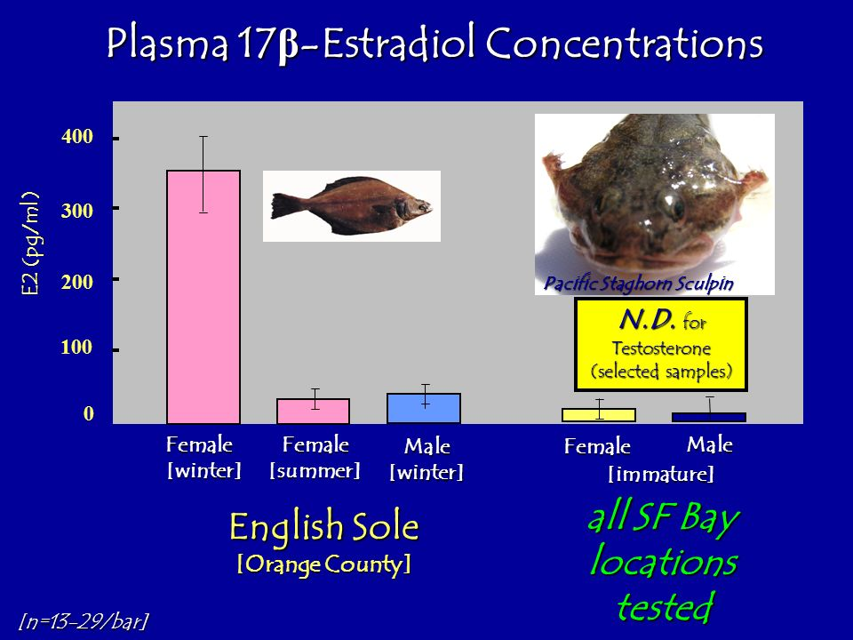 Plasma 17β-Estradiol Concentrations