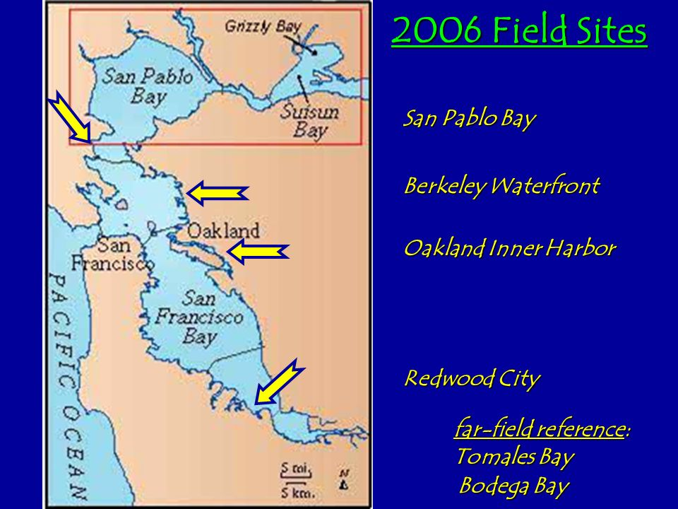 2006 Field Sites San Pablo Bay Berkeley Waterfront