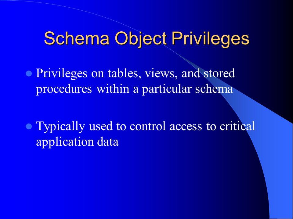 Schema Object Privileges