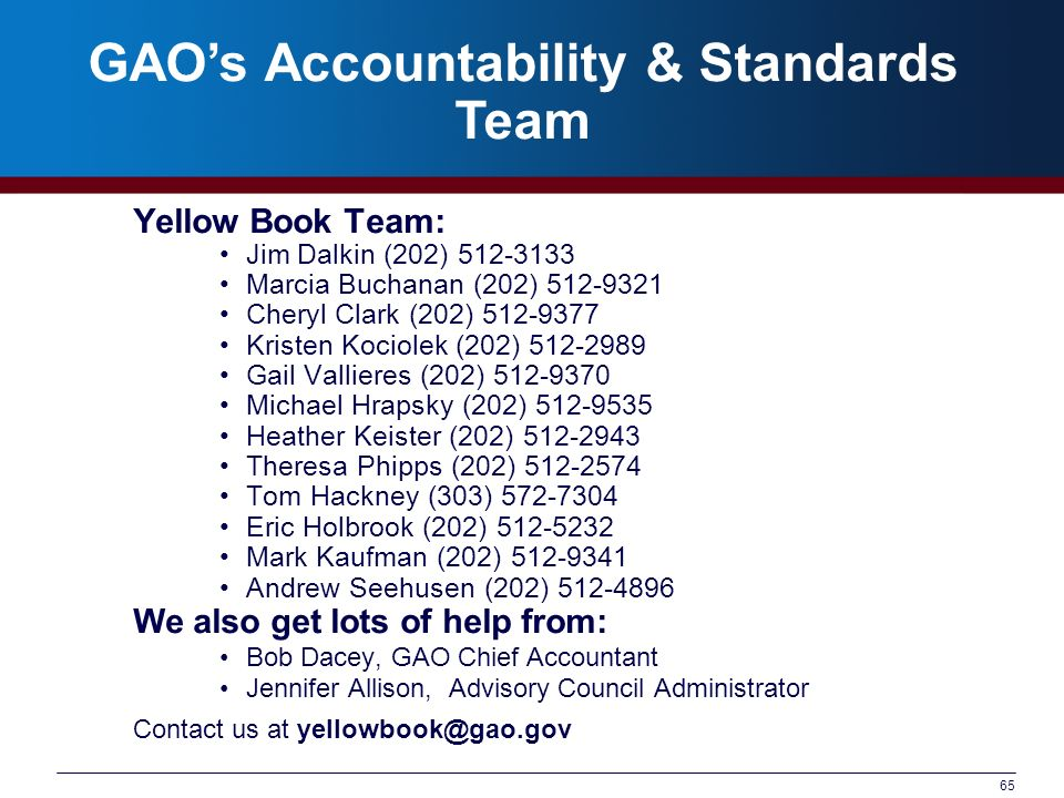 GAO's Accountability & Standards Team