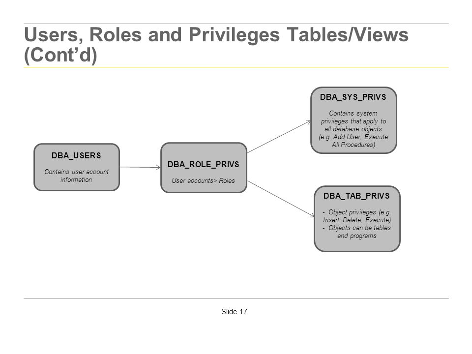 Users, Roles and Privileges Tables/Views (Cont'd)