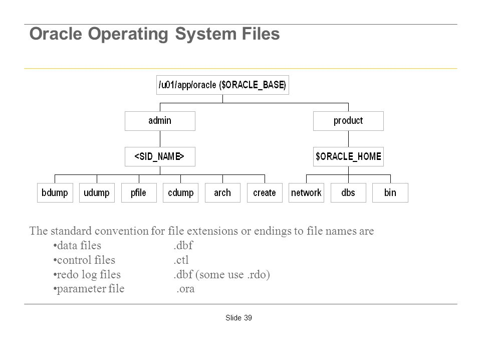 Oracle Operating System Files