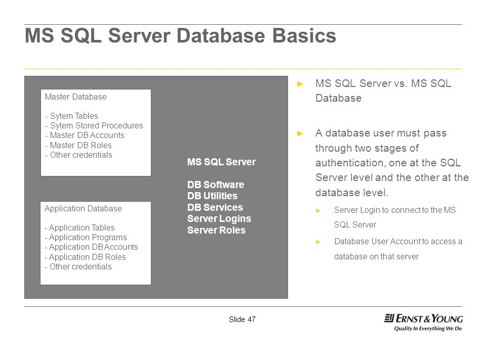 MS SQL Server Database Basics