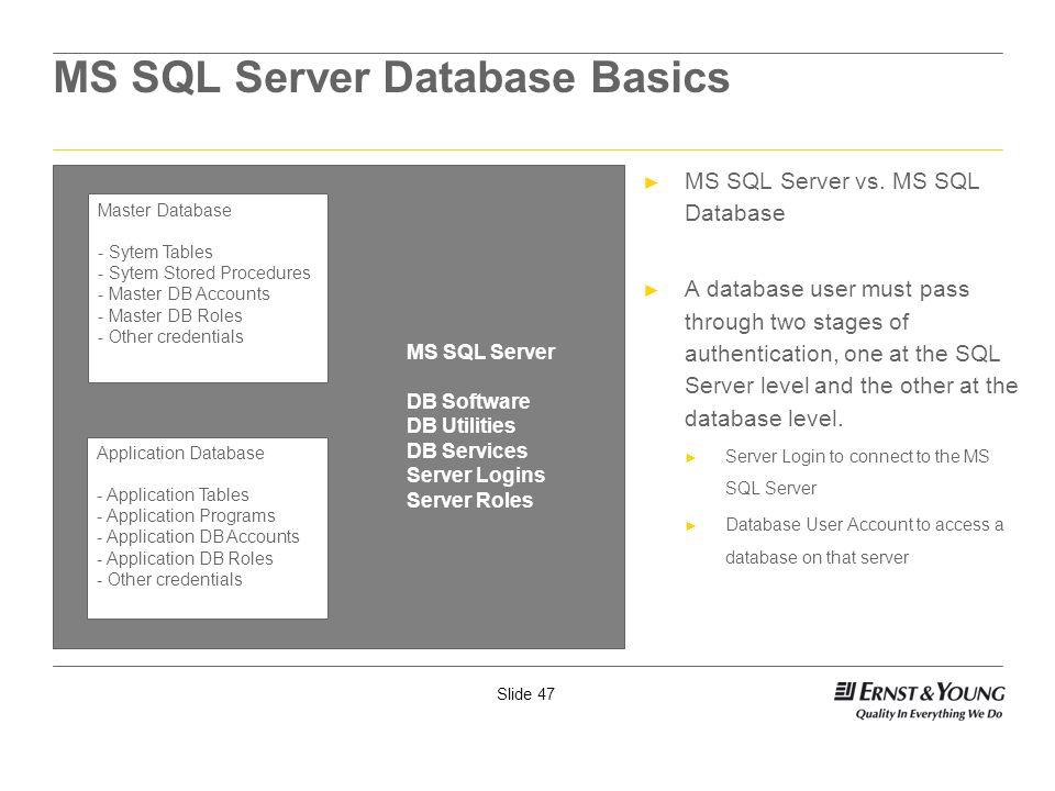 MS SQL Server Database Basics
