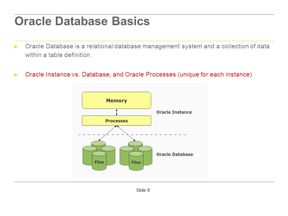 Oracle Database Basics