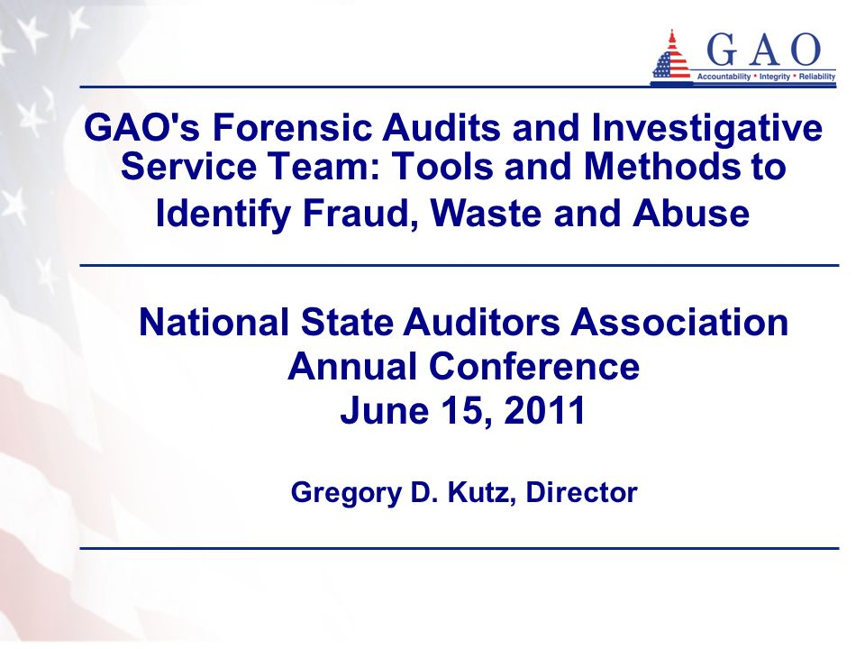 National State Auditors Association Gregory D. Kutz, Director