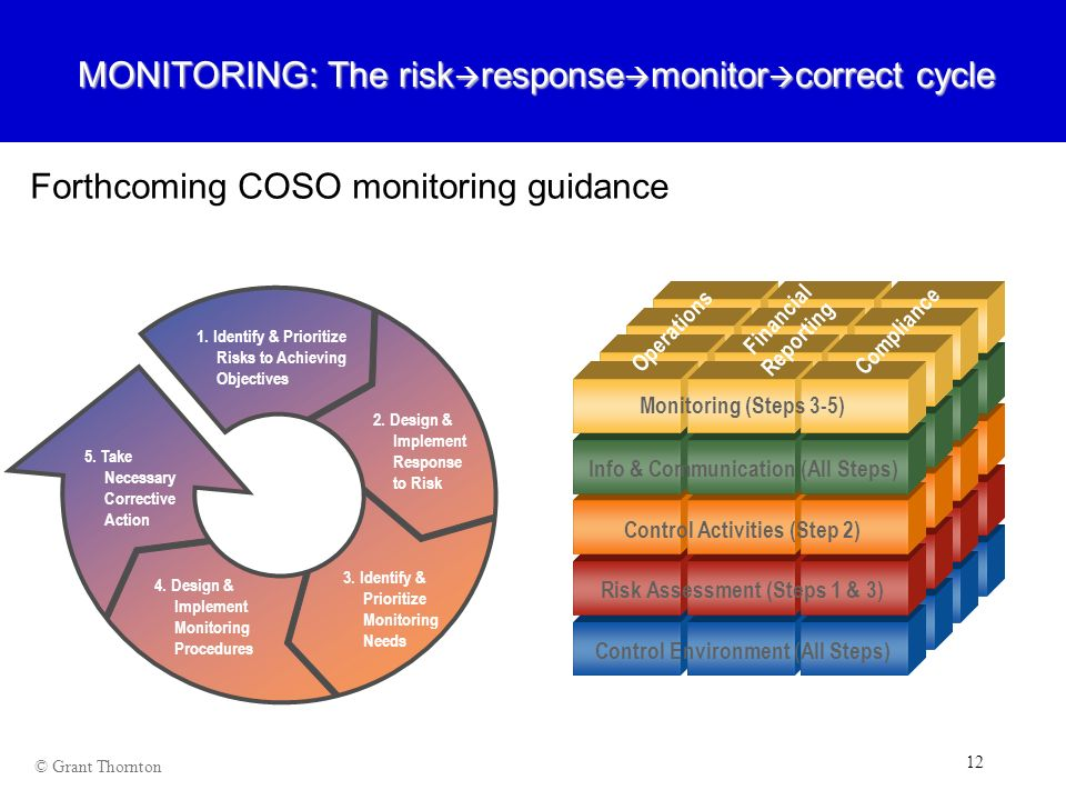 MONITORING: The riskresponsemonitorcorrect cycle