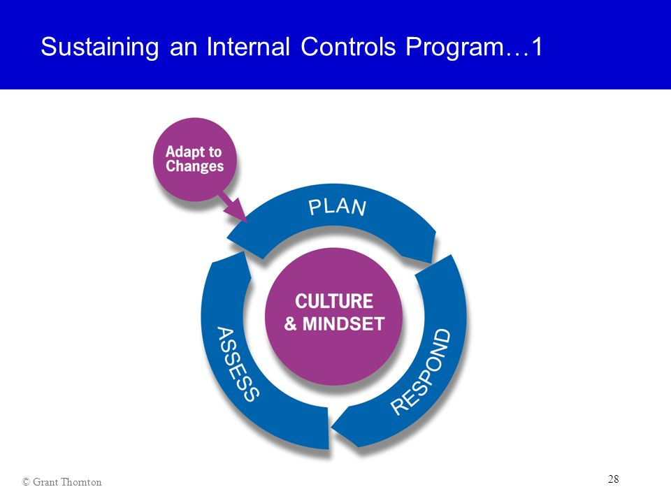 Sustaining an Internal Controls Program…1