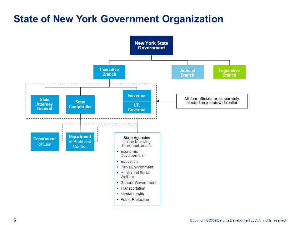 State of New York Government Organization