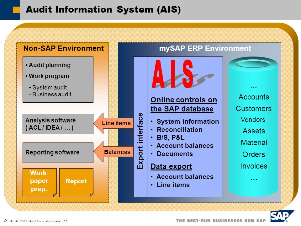 Audit Information System (AIS)