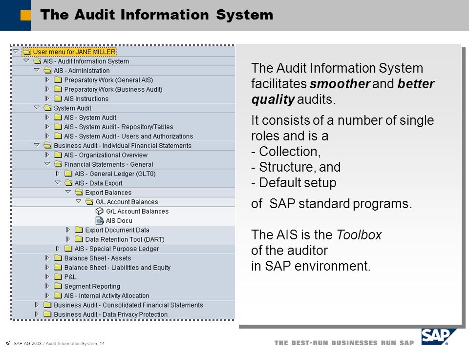 The Audit Information System