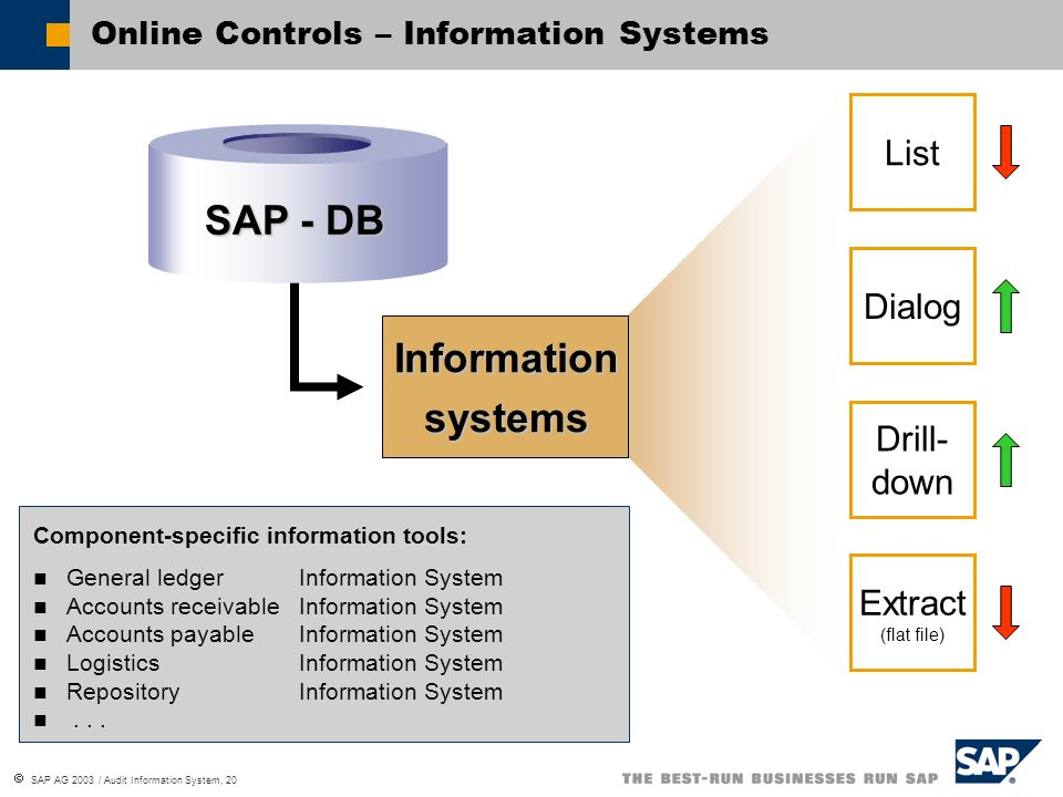 Online Controls – Information Systems