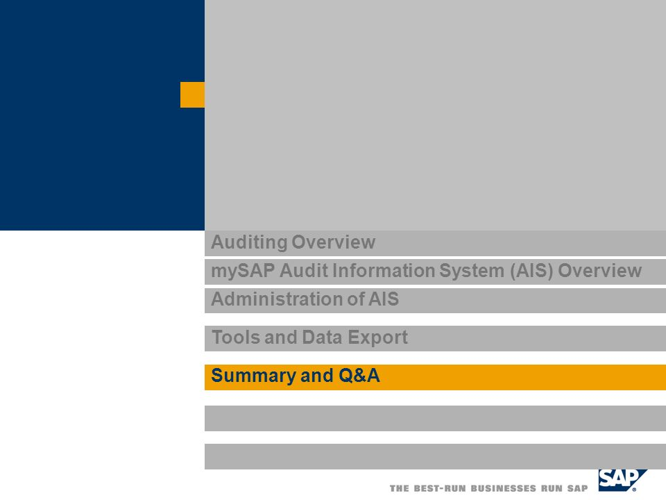 mySAP Audit Information System (AIS) Overview
