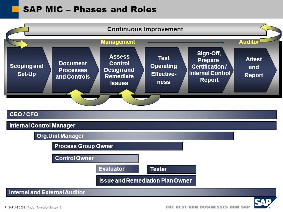 SAP MIC – Phases and Roles