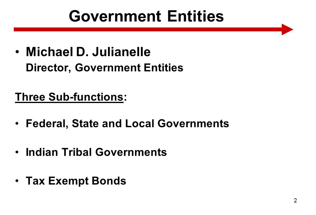 Government Entities Michael D. Julianelle