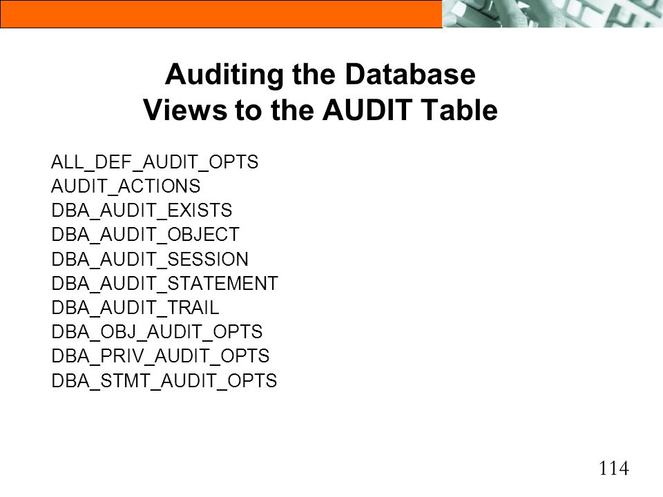 Auditing the Database Views to the AUDIT Table