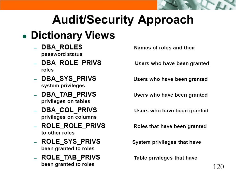 Audit/Security Approach
